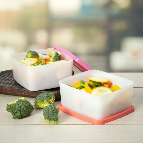 Square Refrigerator Container Cool N Fresh 450ml 2pc